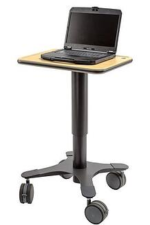 1RM Maple w-laptop